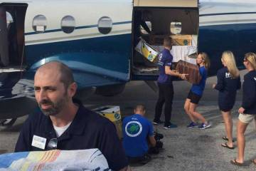 Delivering boxed sea turtles at the airport