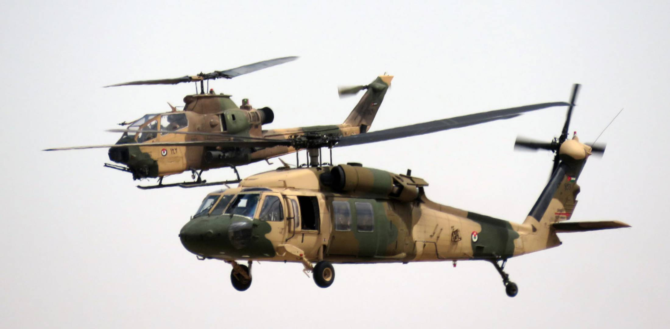 UH-60A and AH-1F in flight