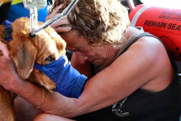 woman and dog rescue