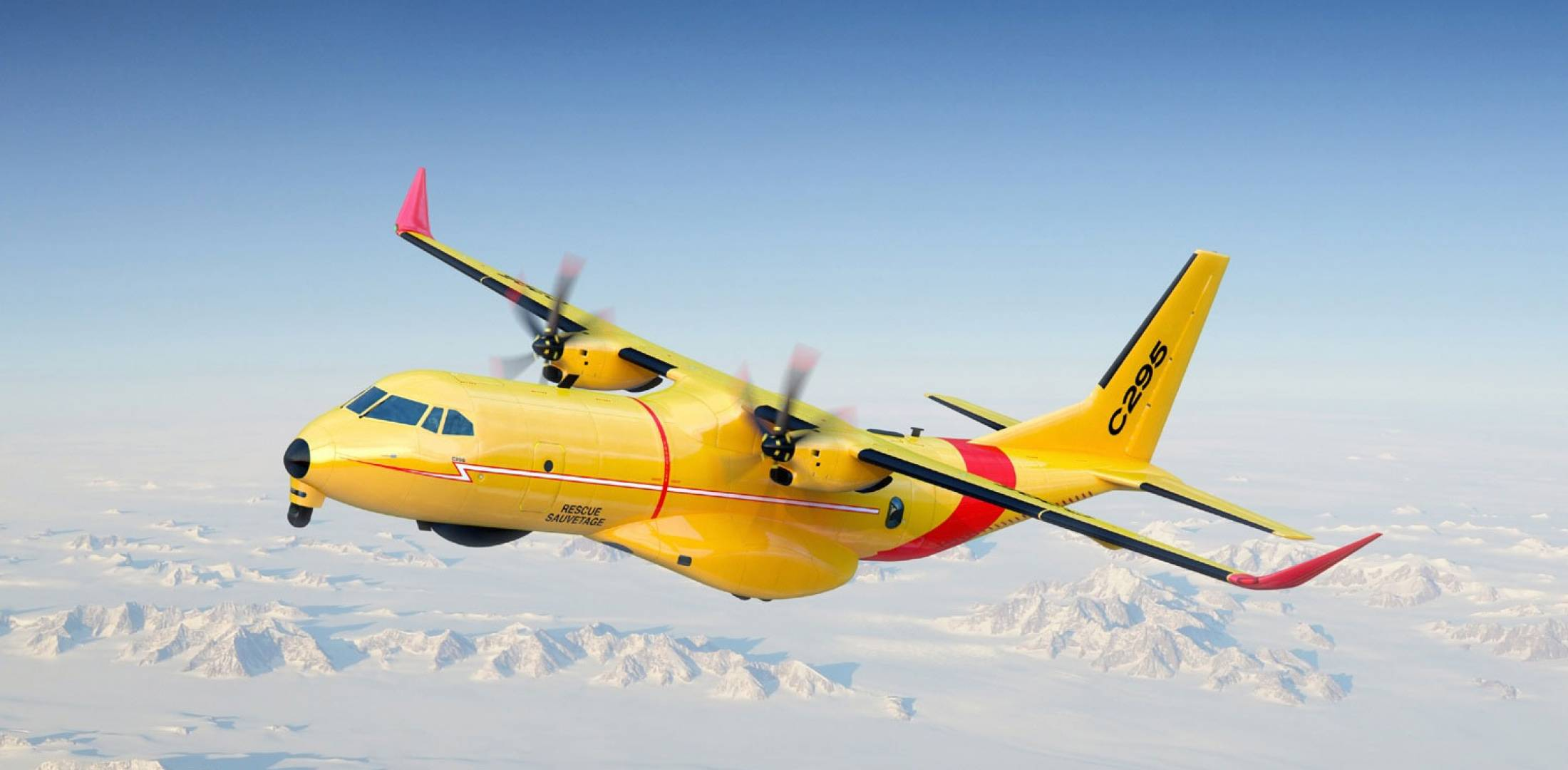 C295W in flight