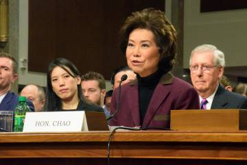 Transportation Secretary nominee Elaine Chao